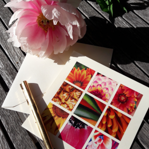 Lorys Collages Fleurs